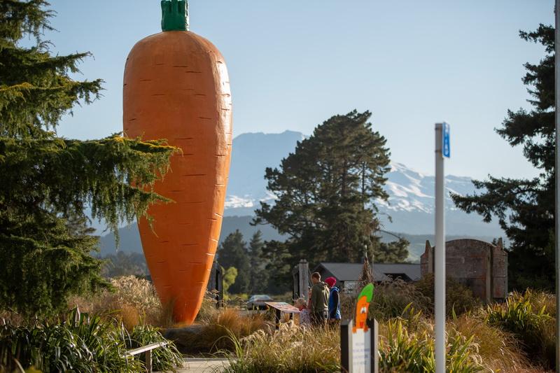 Ohakune Carrot